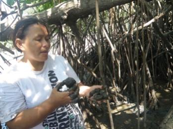 Historias de vida: El manglar es nuestra tradición y sustento